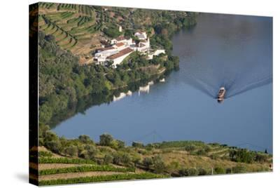 Douro Valley, Douro River, Porto. Valley Is Lined with Steeply Sloping Hills and Vineyards-Emily Wilson-Stretched Canvas Print