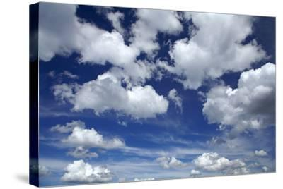 Clouds over Waikato, North Island, New Zealand-David Wall-Stretched Canvas Print