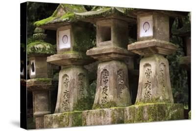 Kasuga-Taisha Shrine-Paul Dymond-Stretched Canvas Print