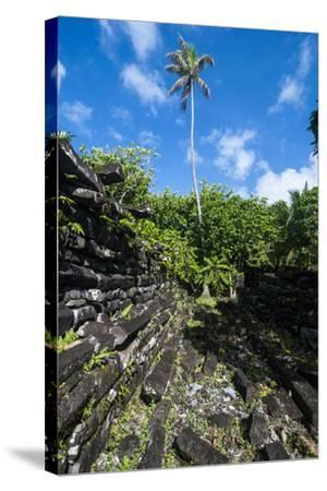Ruined City Nan Madol, Pohnpei, Micronesia, Central Pacific-Michael Runkel-Stretched Canvas Print