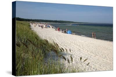 Lyckesand Beach Backed by Sand Dunes, Baltic Coast-Stuart Black-Stretched Canvas Print
