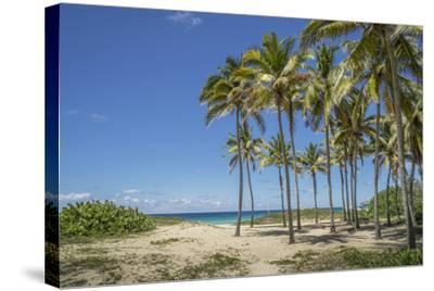 Playa De L'Este, Havana, Cuba, West Indies, Caribbean, Central America-Angelo Cavalli-Stretched Canvas Print