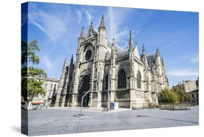Basilica of Saint Michel, Bordeaux, Aquitaine, France, Europe-Michael Runkel-Stretched Canvas Print