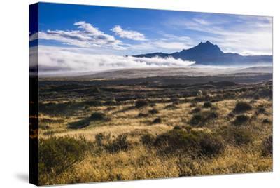 Sincholagua Volcano at Sunrise, Cotopaxi Province, Ecuador, South America-Matthew Williams-Ellis-Stretched Canvas Print