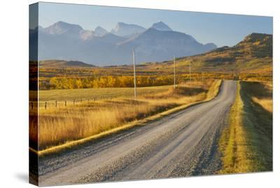 Country Road Through a Mountainous Landscape, Near Twin Butte, Alberta, Canada, North America-Miles Ertman-Stretched Canvas Print