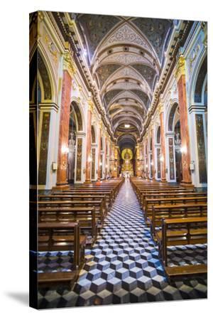 Inside Salta Cathedral, Salta, Salta Province, North Argentina, Argentina, South America-Matthew Williams-Ellis-Stretched Canvas Print
