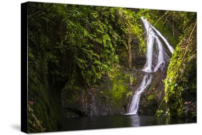 Wigmore's Waterfall, Rarotonga, Cook Islands, South Pacific, Pacific-Matthew Williams-Ellis-Stretched Canvas Print