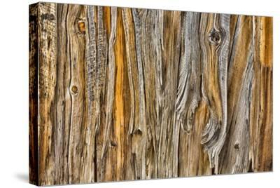 Weathered Wall II-Kathy Mahan-Stretched Canvas Print