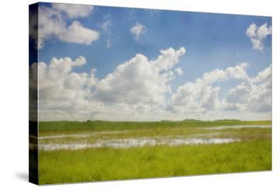 Prairie Slough in Summer-Roberta Murray-Stretched Canvas Print
