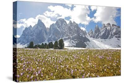 Italy, South Tyrol, the Dolomites, Geislerspitzen-Alfons Rumberger-Stretched Canvas Print