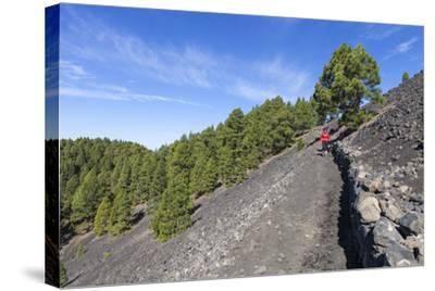Woman Hiking in the Volcano Landscape of the Nature Reserve Cumbre Vieja, La Palma, Spain-Gerhard Wild-Stretched Canvas Print
