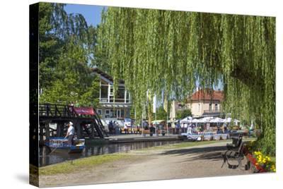 Europe, Germany, Brandenburg, Spreewald (Spree Forest), L?bbenau, Harbour Promenade, Weeping Willow-Chris Seba-Stretched Canvas Print