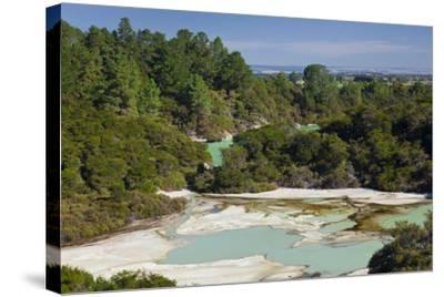 Wai-O-Tapu Thermal Wonderland, Bay of Plenty, North Island, New Zealand-Rainer Mirau-Stretched Canvas Print