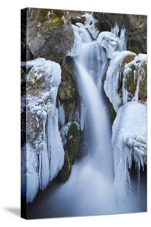Austria, Lower Austria, Miraf?lle (Waterfall), Winter-Rainer Mirau-Stretched Canvas Print