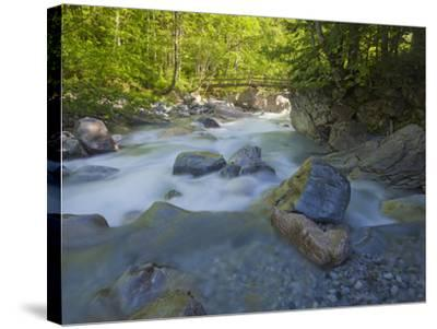 Austria, Carinthia, Mauthner Klamm (Ravine), Valentinbach (Brook), Stones, Bridge-Rainer Mirau-Stretched Canvas Print