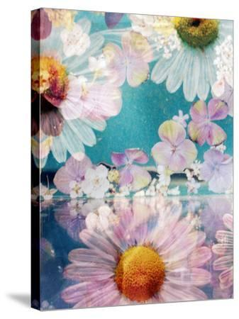 Composing of Blossoms and Water-Alaya Gadeh-Stretched Canvas Print