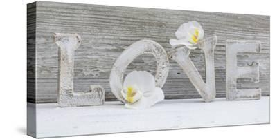 Wooden Letters 'Love' with Orchid Blossoms-Uwe Merkel-Stretched Canvas Print