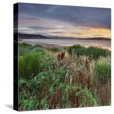 Porpoise Bay, Catlins, Southland, South Island, New Zealand-Rainer Mirau-Stretched Canvas Print