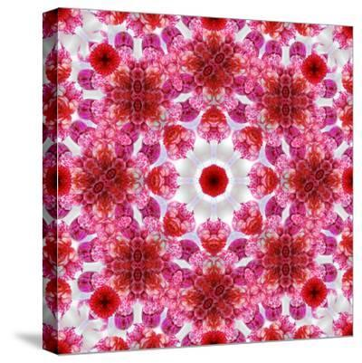 A Mandala Ornament from Flowers, Photographic Layer Work-Alaya Gadeh-Stretched Canvas Print