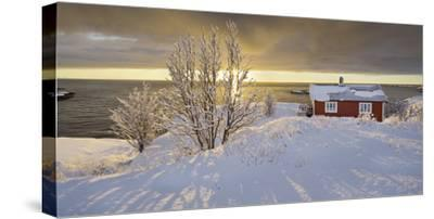 Hut in Reine (Village), Moskenesoya (Island), Lofoten, 'Nordland' (County), Norway-Rainer Mirau-Stretched Canvas Print