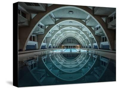 Swimming at Night-Renate Reichert-Stretched Canvas Print