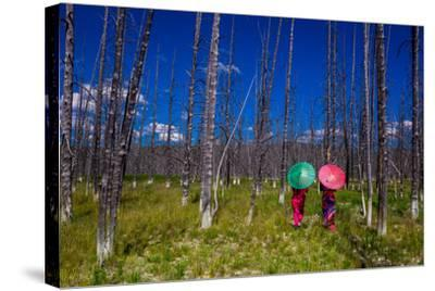 Two Girls with Parasols in Burnt Forest, Yellowstone National Park, Wyoming-Laura Grier-Stretched Canvas Print