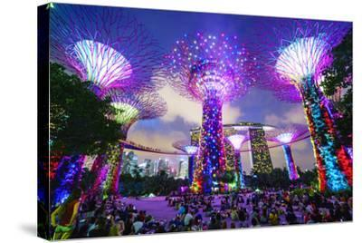 Supertree Grove in the Gardens by the Bay, a Futuristic Botanical Gardens and Park-Fraser Hall-Stretched Canvas Print