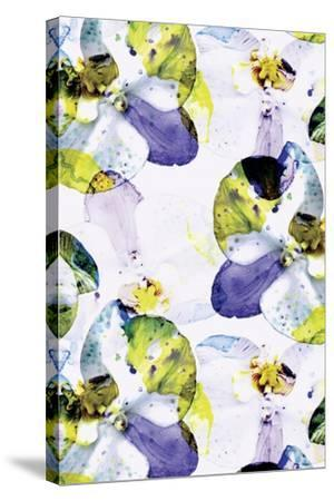 Early Bloom Vol II-Cayena Blanca-Stretched Canvas Print