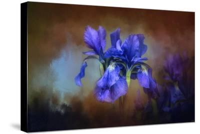 Blue Iris Blooms-Jai Johnson-Stretched Canvas Print