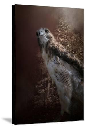 Chickasaw Redtail-Jai Johnson-Stretched Canvas Print