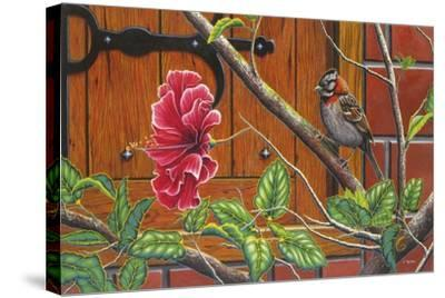 The Sparrow Who Visit Your Window-Luis Aguirre-Stretched Canvas Print
