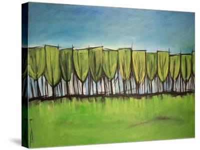 Evangelist Trees-Tim Nyberg-Stretched Canvas Print