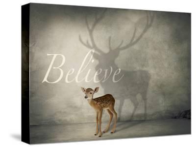 Believe #3-J Hovenstine Studios-Stretched Canvas Print