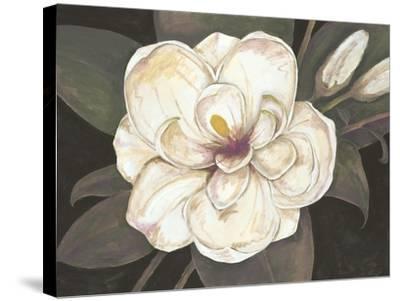 Southern Magnolia-Filippo Ioco-Stretched Canvas Print