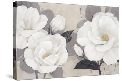 Unfolding Blossoms-Ivo Stoyanov-Stretched Canvas Print