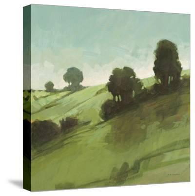 Knoll View 3 Square-DB Edwards-Stretched Canvas Print