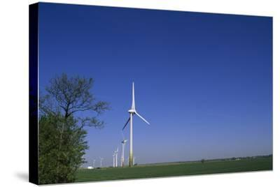 A Row of Windmills in a Field-Norbert Rosing-Stretched Canvas Print