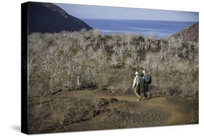 Tourists Hiking Near Darwin Lake at Tagus Cove-Jad Davenport-Stretched Canvas Print