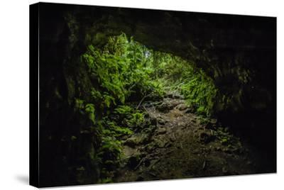 Collapsed Lava Tube in the Highlands of Santa Cruz Island-Jad Davenport-Stretched Canvas Print