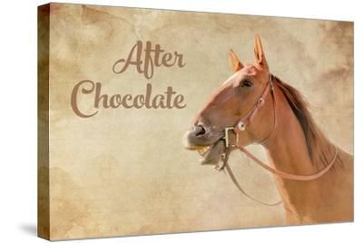 After Chocolate-Romona Murdock-Stretched Canvas Print