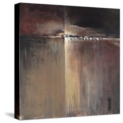 Coral Desert-Terri Burris-Stretched Canvas Print
