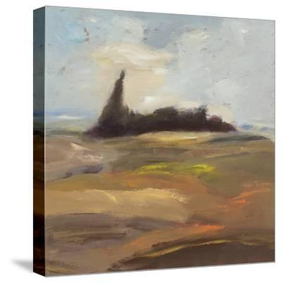 Morning Reverie I-Bradford Brenner-Stretched Canvas Print
