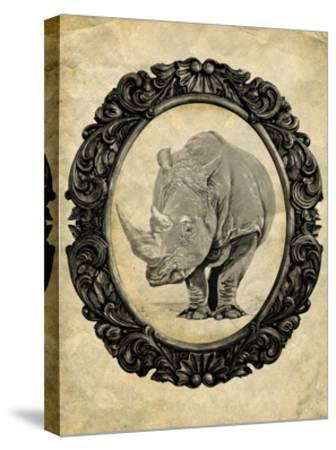 Framed Rhinoceros-THE Studio-Stretched Canvas Print