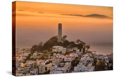 Coit Tower and Golden Fog Flow, San Francisco, Cityscape, Urban View-Vincent James-Stretched Canvas Print