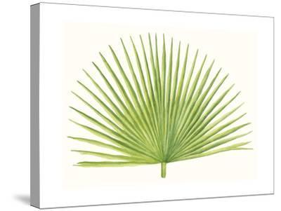 Tropical Breeze Leaves III-Naomi McCavitt-Stretched Canvas Print