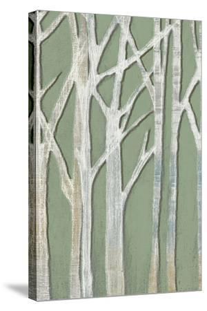 Birchline Triptych II-Jennifer Goldberger-Stretched Canvas Print