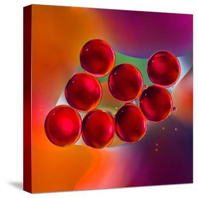 Macro of Red Engine Oil Drops on Water Surface with Colorful Blured Background- Abstract Oil Work-Stretched Canvas Print