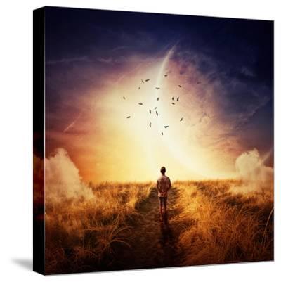 Boy Walking-Bordeianu Andrei-Stretched Canvas Print