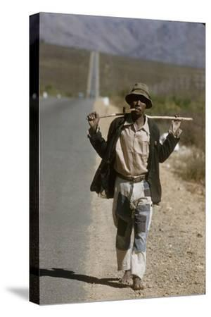 African Man Walks Along Side of Road, Durban, South Africa, 1960-Grey Villet-Stretched Canvas Print