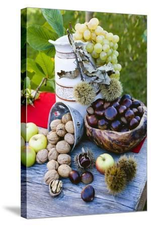 Grapes, Sweet Chestnuts, Apples and Nuts-Eising Studio - Food Photo and Video-Stretched Canvas Print